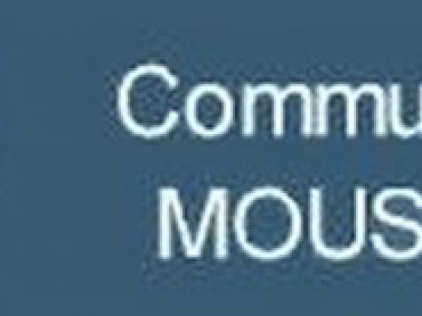 Logo-Mousson