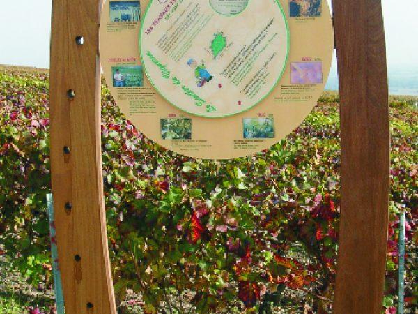 Jeu avec roue calendrier de la vigne en Champagne - Mutigny (51)