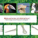 Extraits d'un ensemble de 2 jeux d'observations et de connaissances pour les enfants sur le thème des oiseaux